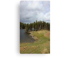 Lake District Trees Canvas Print