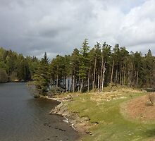 Tarn Hows Lake District by loubylou2209