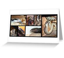 Magie's Reptiles Greeting Card