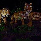Tigers by mrfriendly