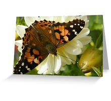 Bonnie Butterfly Greeting Card