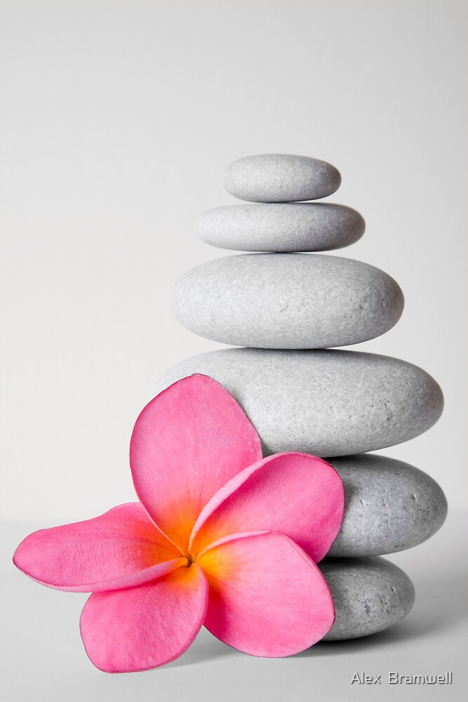 Zen Pebbles and Frangipani Flower by Alex  Bramwell