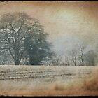 frozen countryside by Sonia de Macedo-Stewart