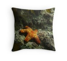 Starfish Undercover - Port Noarlunga Throw Pillow