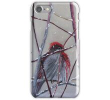 First Snow Visitor iPhone Case/Skin