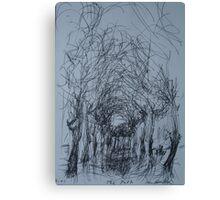 Winter park           2darts,  Canvas Print
