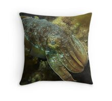 Cruising Giant Cuttlefish - Stony Point, Whyalla Throw Pillow