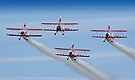 Guinot Wingwalkers 4 Ship by Colin  Williams Photography