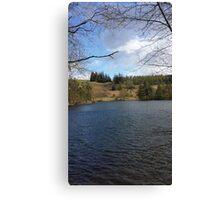 Lake Views Canvas Print