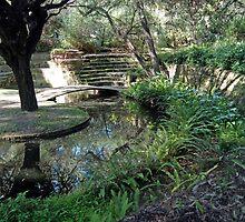 Sunken Garden, University of Western Australia by Adrian Paul