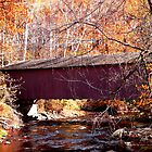 Jericho Covered Bridge by Hope Ledebur