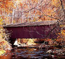 Jericho Covered Bridge by Hope Ledebur