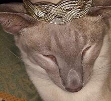 Gabriel Siamese Cat Crown by loubylou2209