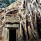 Ta Prohm by Kerry Dunstone