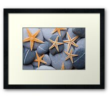 Starfish on a Pebble Beach Framed Print
