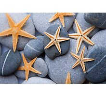 Starfish on a Pebble Beach Photographic Print