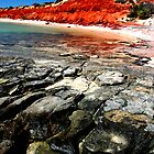 """Bottle Bay"" Francois Peron National Park, Western Australia by wildimagenation"