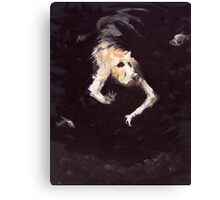 The Diving Dog Canvas Print