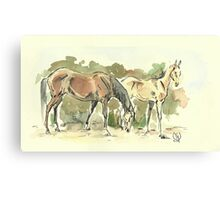 """""""Mare with a Foal"""" Canvas Print"""