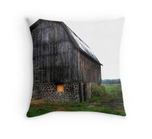 Interesting barn Throw Pillow