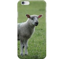 Lamb iPhone Case/Skin