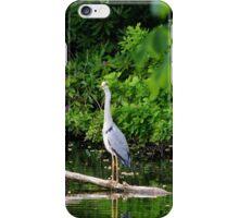 Heron - The Elegant Fisher iPhone Case/Skin