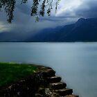 Lake Geneva by Angelika  Vogel