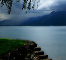Lake Geneva by Angelika  Vogel