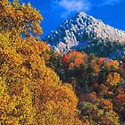 THE CHIMNEY TOPS,AUTUMN SNOW by Chuck Wickham