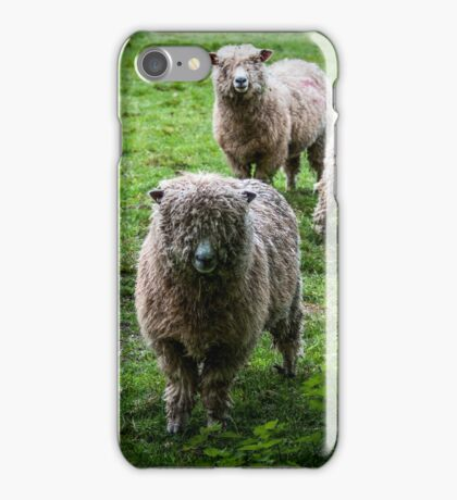 Cotswold sheep iPhone Case/Skin