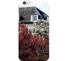 Secluded iPhone Case/Skin