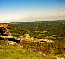 Dartmoor Haytor by David-J