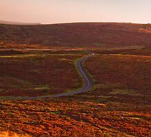 Dartmoor Chicane by David-J