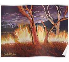 Nightfire at Kakadu Poster