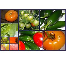 Produce From The Garden Photographic Print