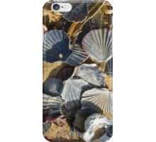Shells On The Beach iPhone Case/Skin