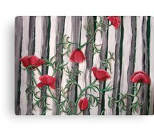 Poppies on the Fence Canvas Print