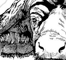 Big Five - Buffalo Sticker