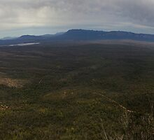 Reeds Lookout panorama by Norman Repacholi