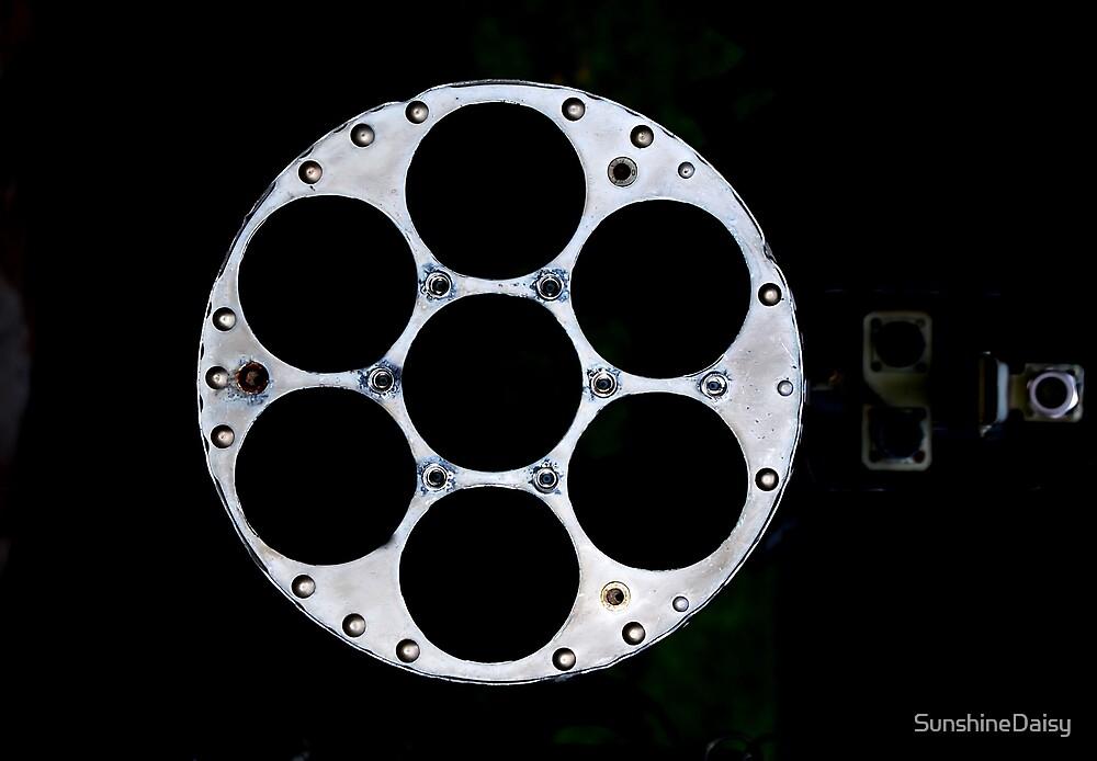 Looking down a barrel. by SunshineDaisy