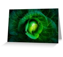 Cabbage with a healthy glow Greeting Card