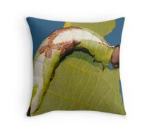 Wavy-lined Prominent Throw Pillow