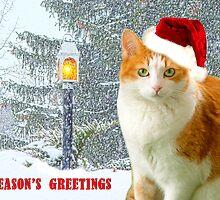Bitty In A Christmas Snow Scene by digitalmidge