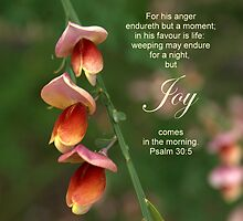Joy Comes in the Morning by Lisa G. Putman