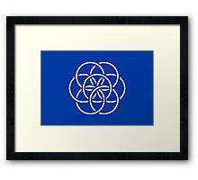International Flag of Earth Framed Print
