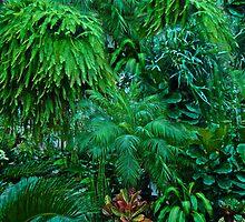 Greenery for Scenery - Otts Greenhouse - Schwenksville PA by MotherNature
