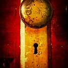 Unlock the Door by Kristen Coleman
