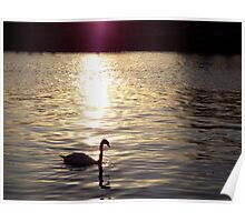 Sunset on the River Itchen Poster