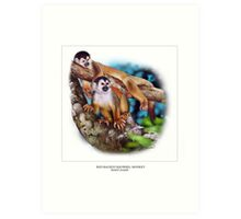 RED-BACKED SQUIRREL MONKEY 6 Art Print