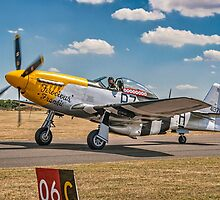 "P-51D Mustang 44-73149 G-BTCD ""Ferocious Frankie"" by Colin Smedley"